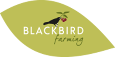 Blackbird Farm