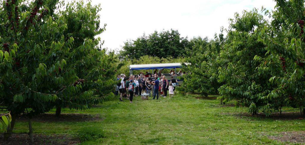 Open Farm Sunday – 7th July 2019