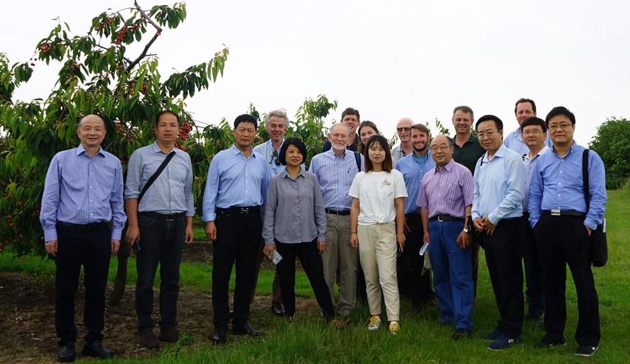 Chinese Fruit Growing Delegation Visit, June 2019